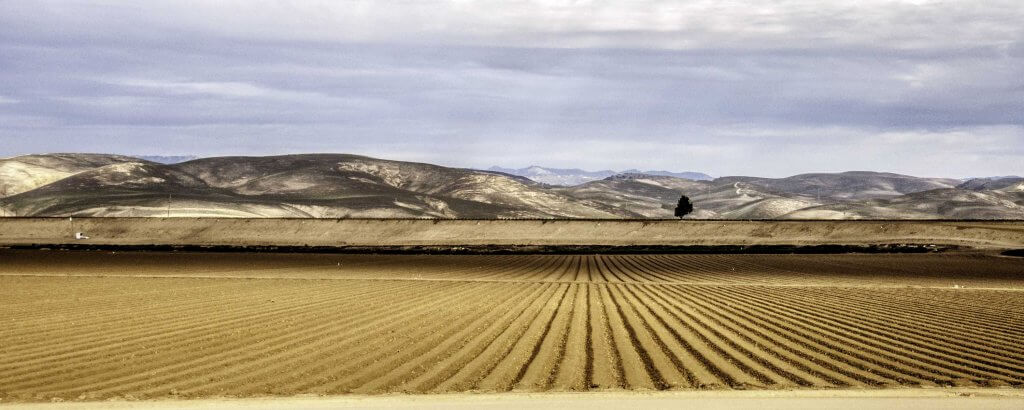 Highway 101 from San Luis Obispo to SF. Land under cultivation in the Salinas River valley.